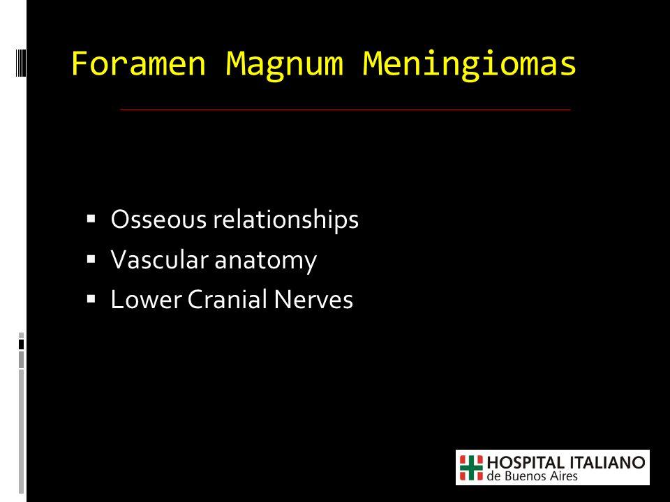  Osseous relationships  Vascular anatomy  Lower Cranial Nerves Foramen Magnum Meningiomas