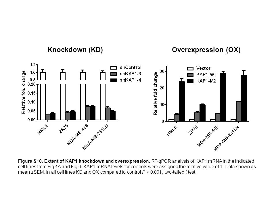 Knockdown (KD) Overexpression (OX) Figure S10. Extent of KAP1 knockdown and overexpression. RT-qPCR analysis of KAP1 mRNA in the indicated cell lines