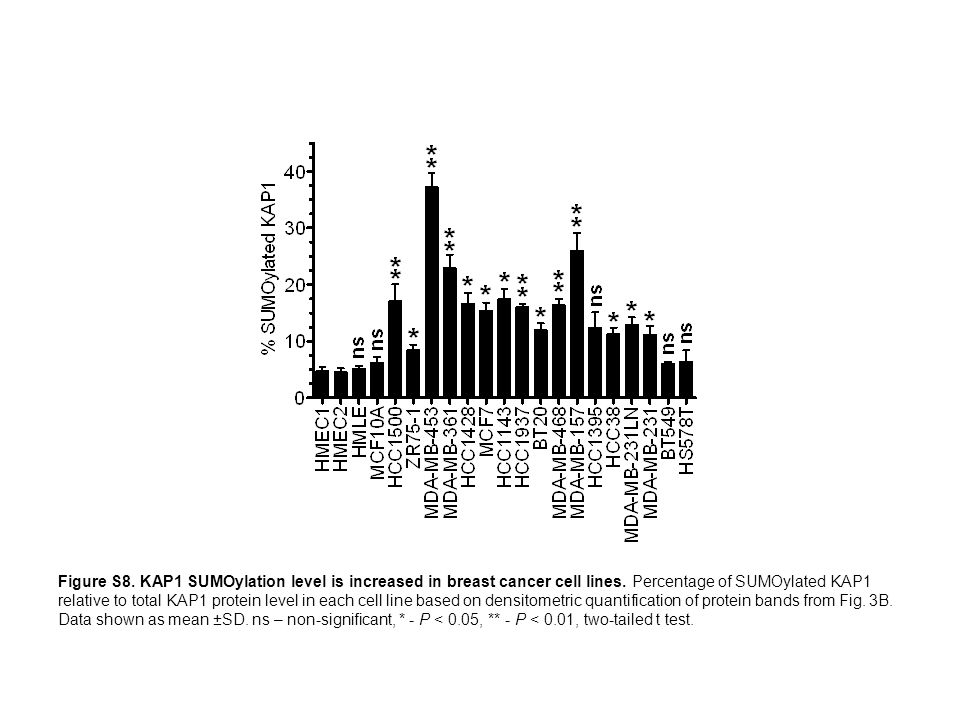 Figure S8. KAP1 SUMOylation level is increased in breast cancer cell lines. Percentage of SUMOylated KAP1 relative to total KAP1 protein level in each