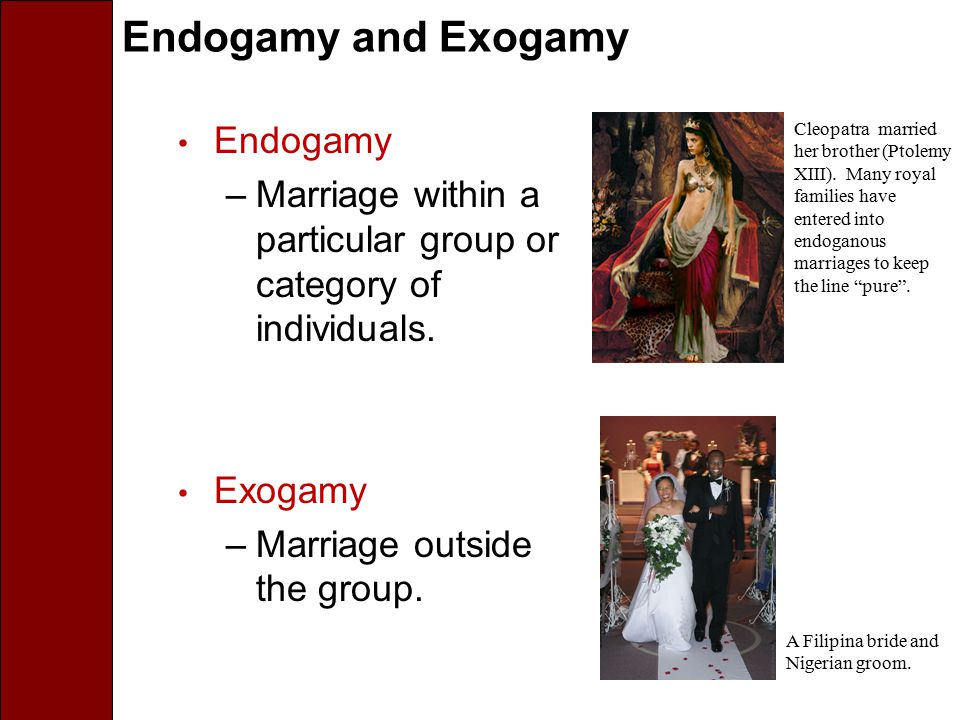 Endogamy and Exogamy Endogamy –Marriage within a particular group or category of individuals. Exogamy –Marriage outside the group. A Filipina bride an