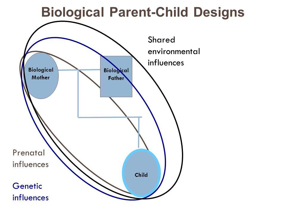 Prenatal influences Child Biological Mother Biological Father Genetic influences Shared environmental influences Biological Parent-Child Designs
