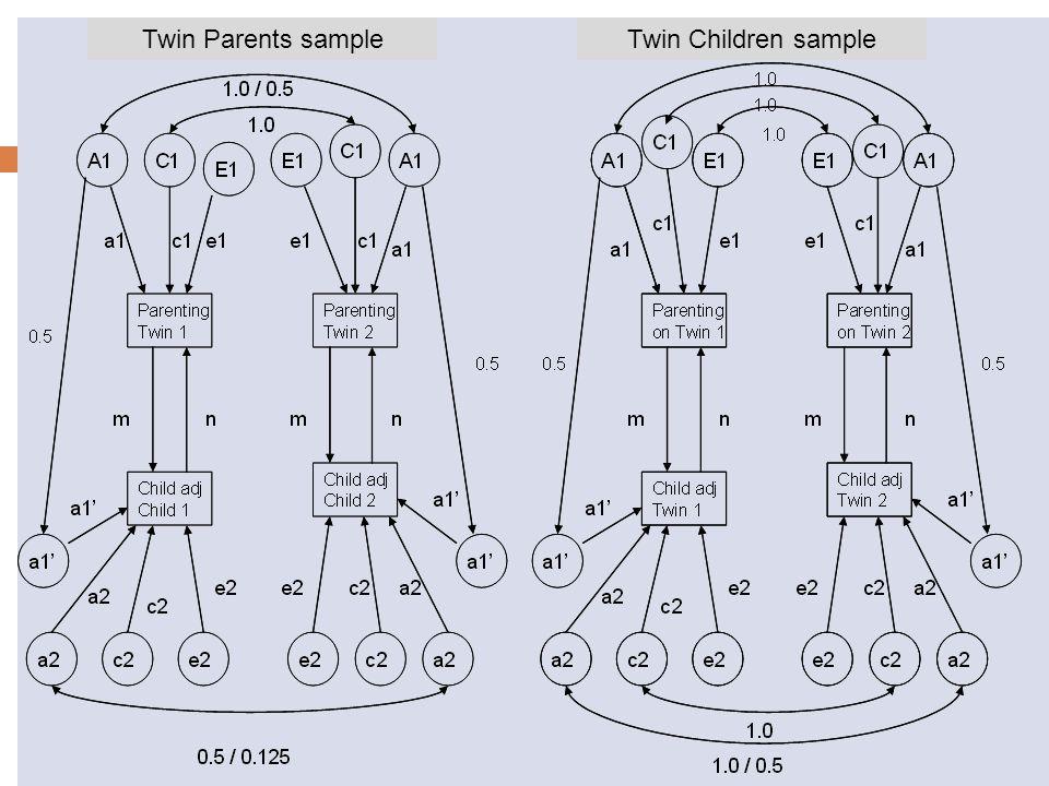 Twin Parents sampleTwin Children sample