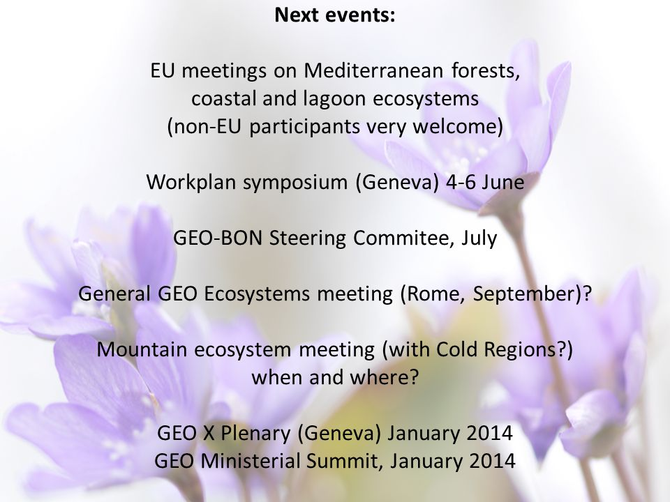 Next events: EU meetings on Mediterranean forests, coastal and lagoon ecosystems (non-EU participants very welcome) Workplan symposium (Geneva) 4-6 June GEO-BON Steering Commitee, July General GEO Ecosystems meeting (Rome, September).