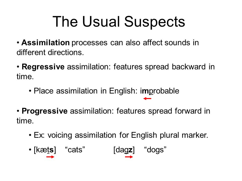 The Usual Suspects Assimilation processes can also affect sounds in different directions. Regressive assimilation: features spread backward in time. P