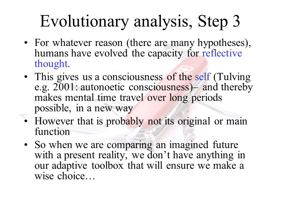 ICABEEP Summer School, 2010 Stephen Lea26 Evolutionary analysis, Step 3 For whatever reason (there are many hypotheses), humans have evolved the capacity for reflective thought.