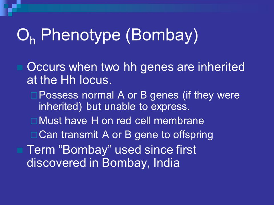 O h Phenotype (Bombay) Occurs when two hh genes are inherited at the Hh locus.  Possess normal A or B genes (if they were inherited) but unable to ex