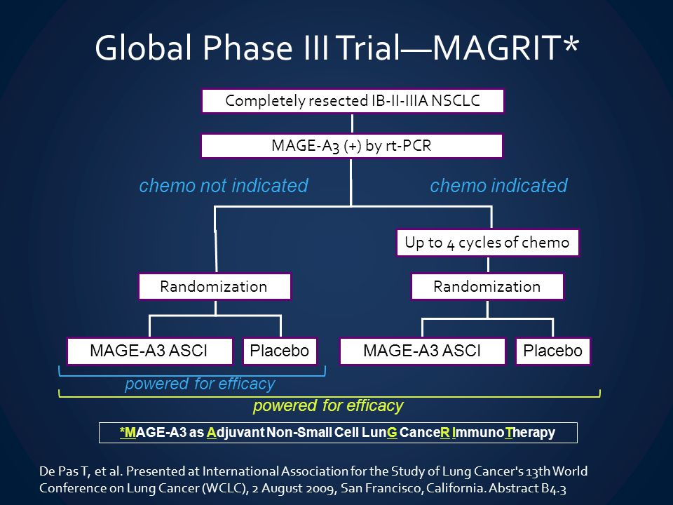 chemo not indicatedchemo indicated Randomization MAGE-A3 ASCIPlacebo Randomization MAGE-A3 ASCIPlacebo Up to 4 cycles of chemo Global Phase III Trial—