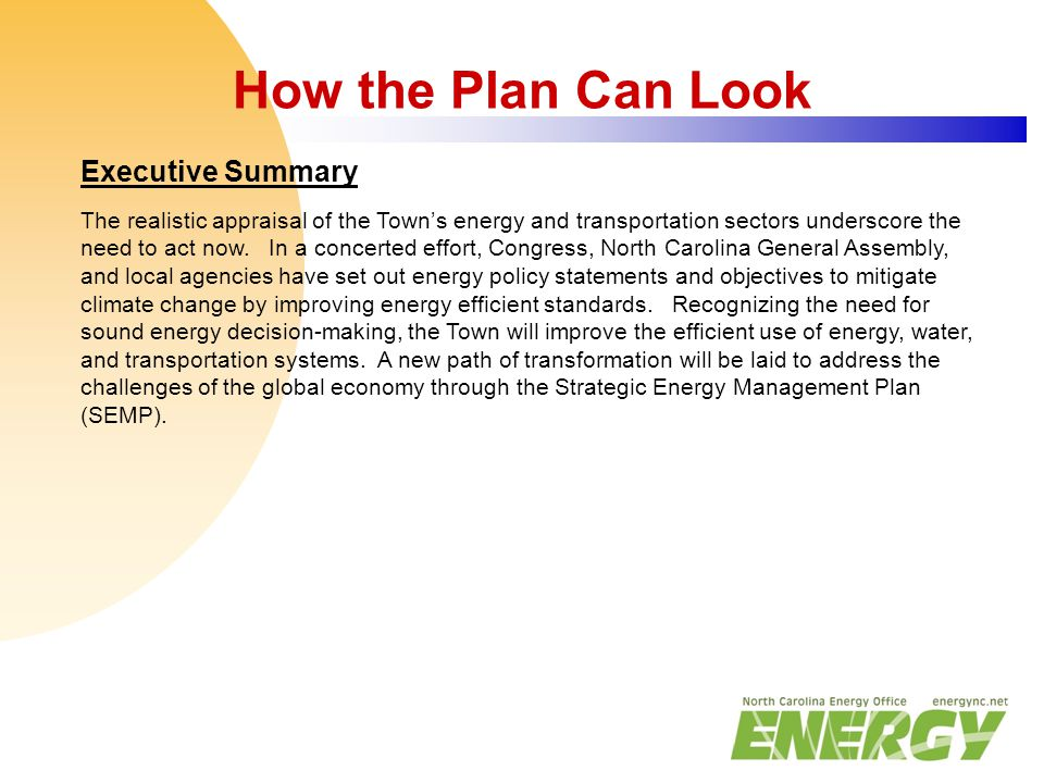 How the Plan Can Look Executive Summary The realistic appraisal of the Town's energy and transportation sectors underscore the need to act now. In a c