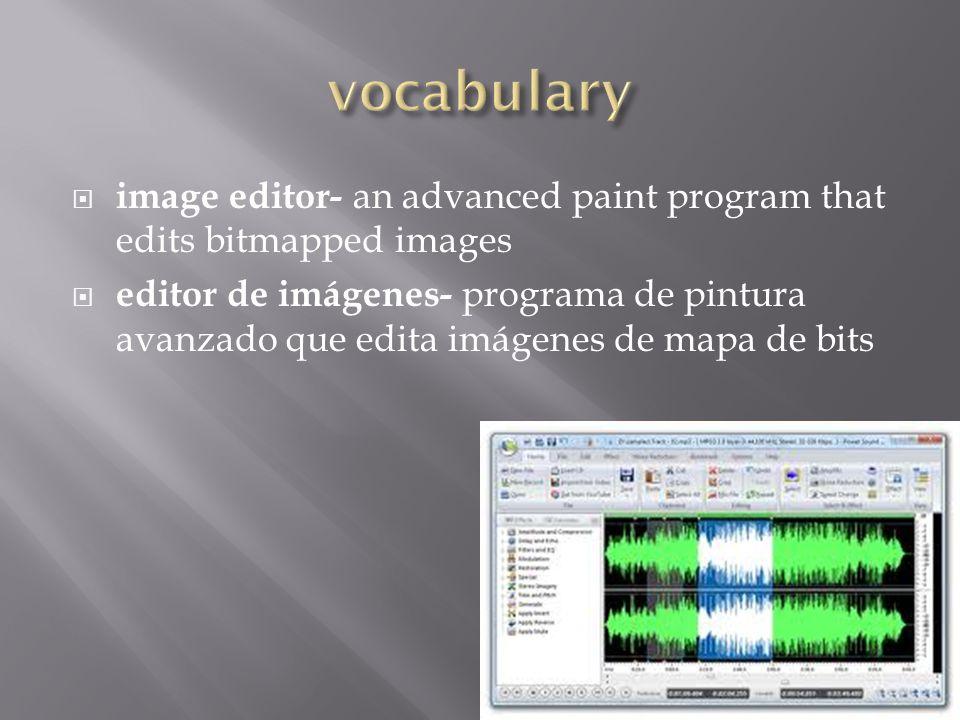  image editor- an advanced paint program that edits bitmapped images  editor de imágenes- programa de pintura avanzado que edita imágenes de mapa de bits