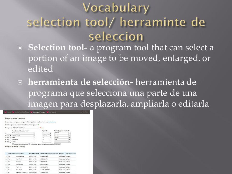  Selection tool- a program tool that can select a portion of an image to be moved, enlarged, or edited  herramienta de selección- herramienta de programa que selecciona una parte de una imagen para desplazarla, ampliarla o editarla