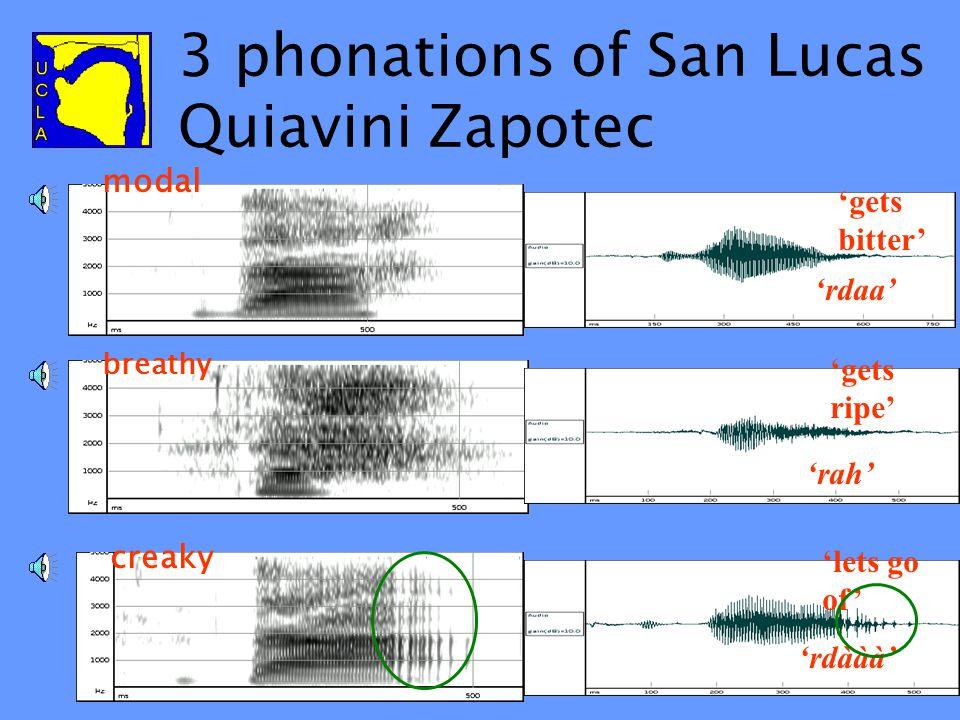 3 phonations of San Lucas Quiavini Zapotec 'gets bitter' modal 'rdaa' 'gets ripe' breathy 'rah' 'lets go of' creaky 'rdààà'