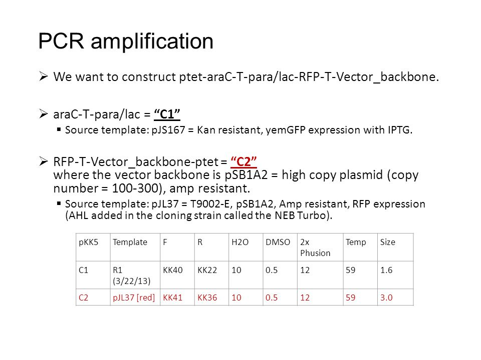 " We want to construct ptet-araC-T-para/lac-RFP-T-Vector_backbone.  araC-T-para/lac = ""C1""  Source template: pJS167 = Kan resistant, yemGFP expressi"