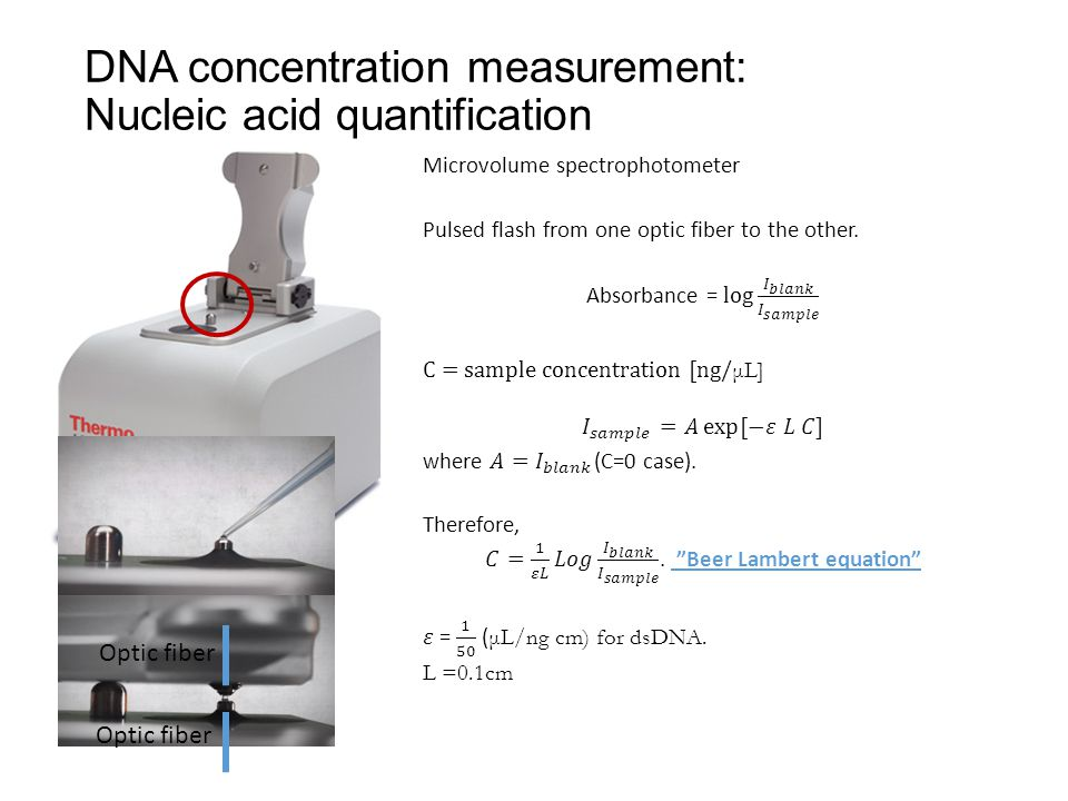 DNA concentration measurement: Nucleic acid quantification Optic fiber