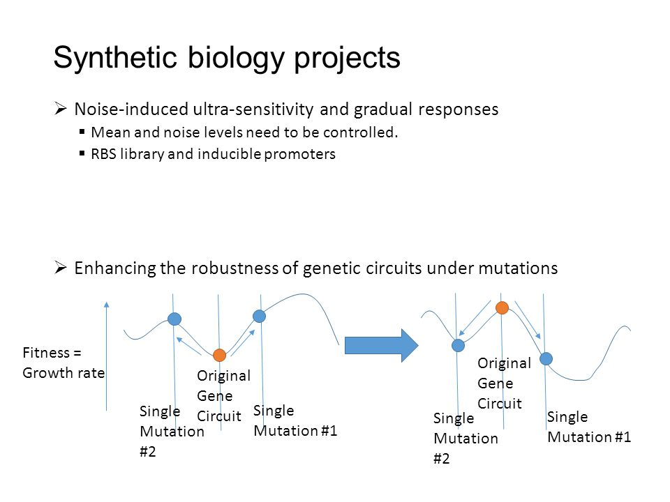 Synthetic biology projects  Noise-induced ultra-sensitivity and gradual responses  Mean and noise levels need to be controlled.