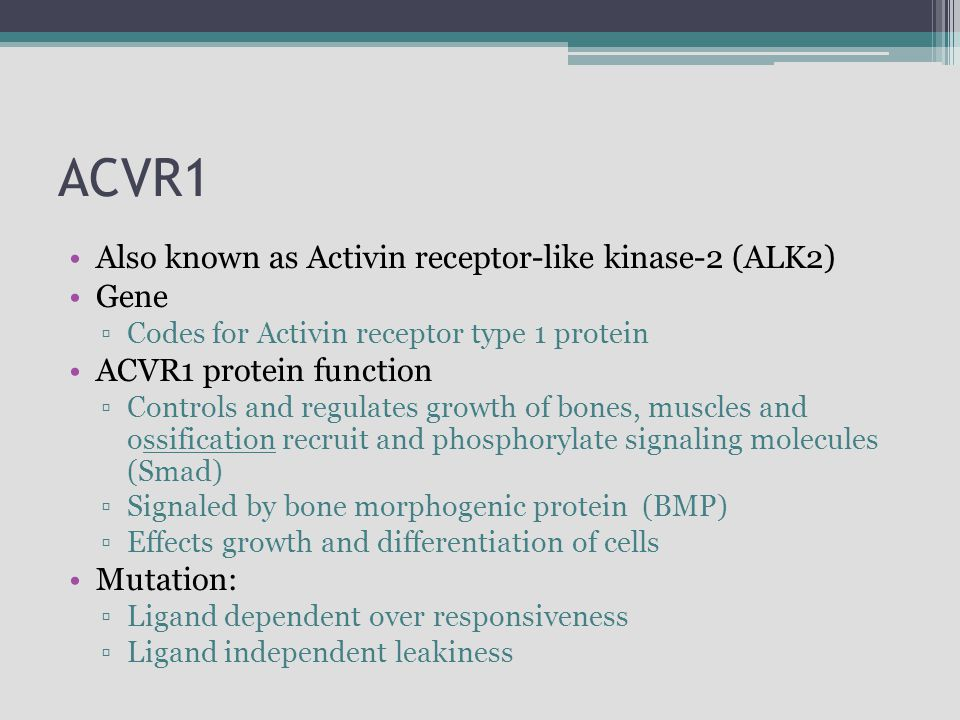 ACVR1 Also known as Activin receptor-like kinase-2 (ALK2) Gene ▫Codes for Activin receptor type 1 protein ACVR1 protein function ▫Controls and regulat