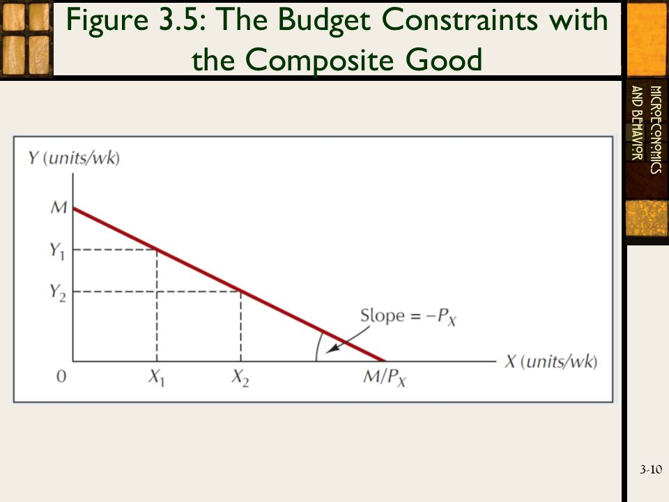 3-10 Figure 3.5: The Budget Constraints with the Composite Good