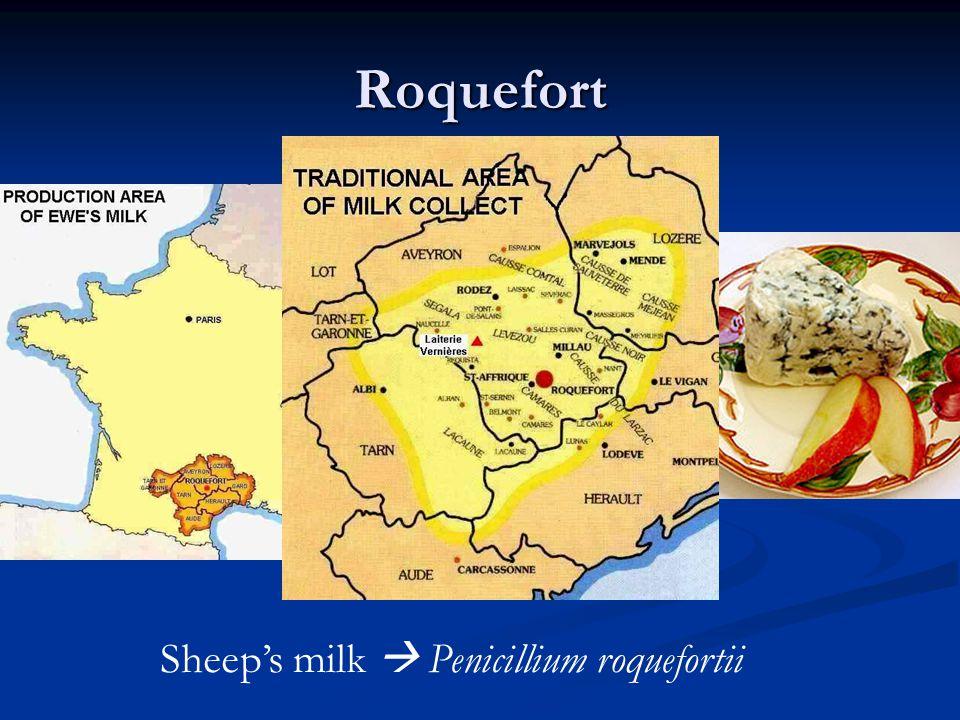 Roquefort Sheep's milk  Penicillium roquefortii