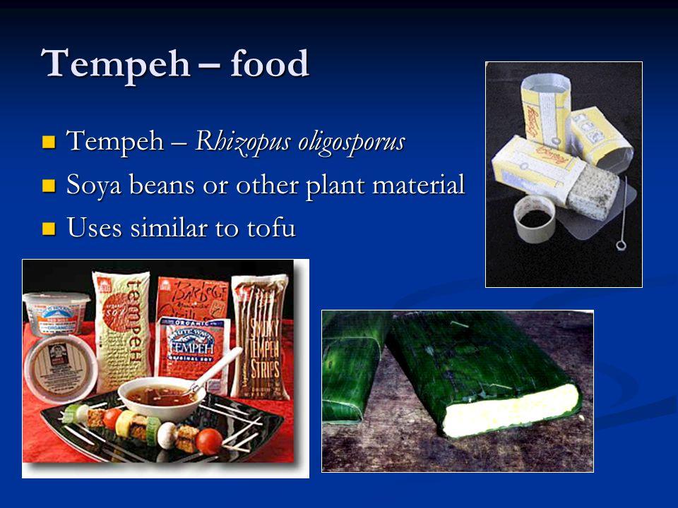 Tempeh – food Tempeh – Rhizopus oligosporus Tempeh – Rhizopus oligosporus Soya beans or other plant material Soya beans or other plant material Uses s