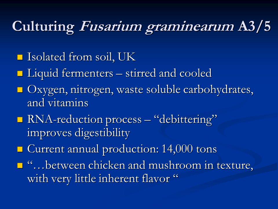 Culturing Fusarium graminearum A3/5 Isolated from soil, UK Isolated from soil, UK Liquid fermenters – stirred and cooled Liquid fermenters – stirred a
