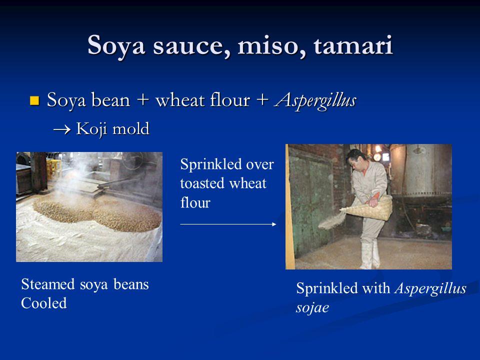 Soya sauce, miso, tamari Soya bean + wheat flour + Aspergillus Soya bean + wheat flour + Aspergillus  Koji mold Steamed soya beans Cooled Sprinkled o