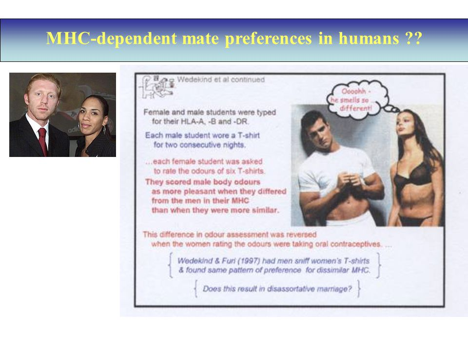 MHC-dependent mate preferences in humans