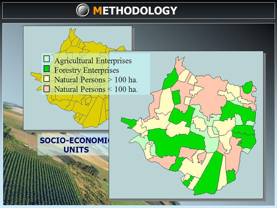 DATA/MAPS (I) DATA INPUT COMPILATION, SELECTION & GENERATION OF COMPLEMENTARY DATA SOCIO-ECONOMIC VARIABLES SOCIO-ECONOMIC ZONING UNITS SOCIO-ECONOMIC ZONING DIGITALIZATION (II) METHODOLOGY