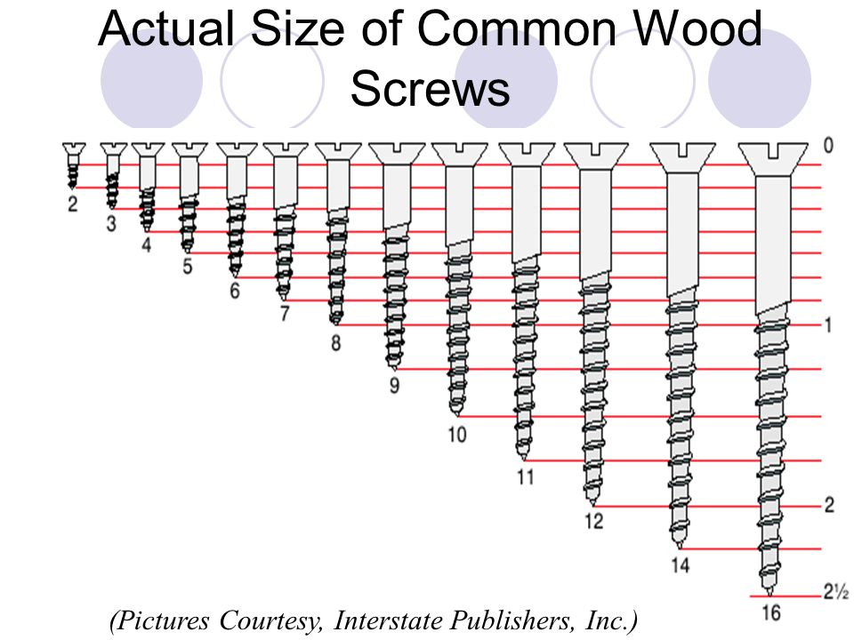 Actual Size of Common Wood Screws (Pictures Courtesy, Interstate Publishers, Inc.)