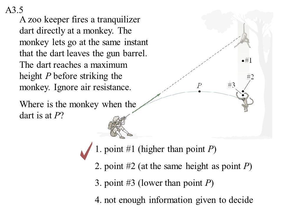 A zoo keeper fires a tranquilizer dart directly at a monkey. The monkey lets go at the same instant that the dart leaves the gun barrel. The dart reac