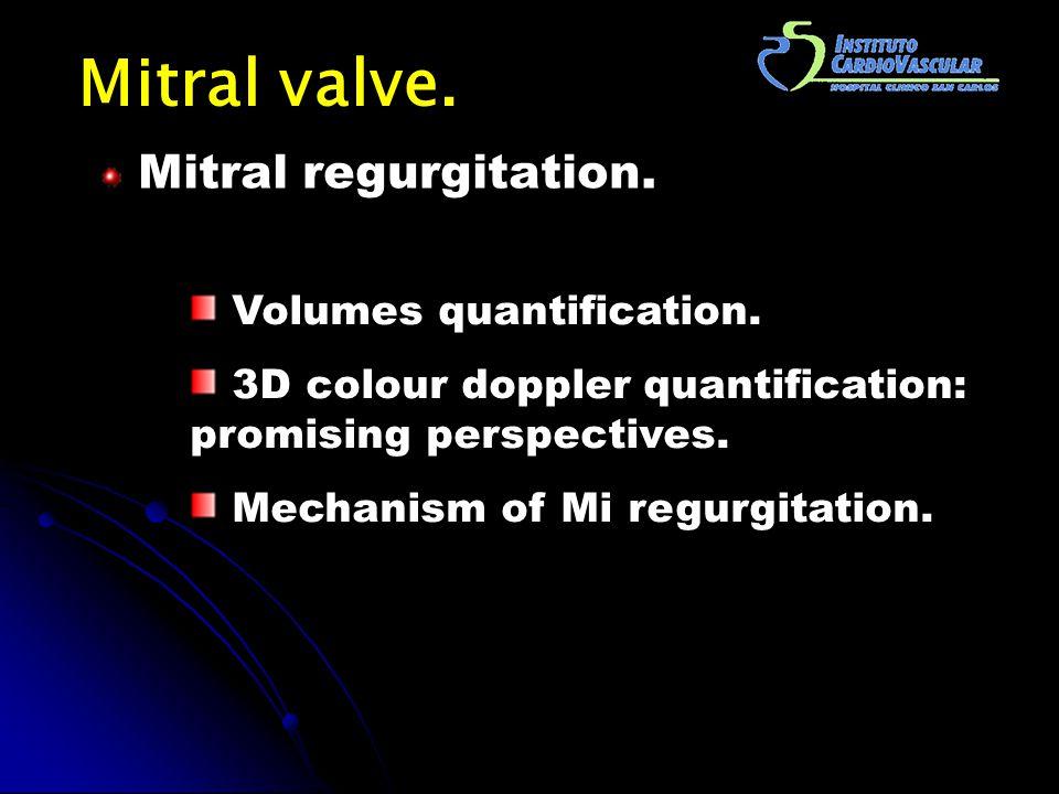 Mitral valve. Mitral regurgitation. Volumes quantification.