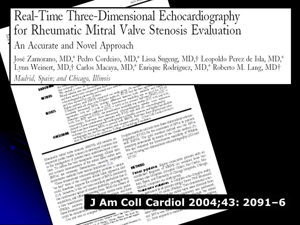 J Am Coll Cardiol 2004;43: 2091–6