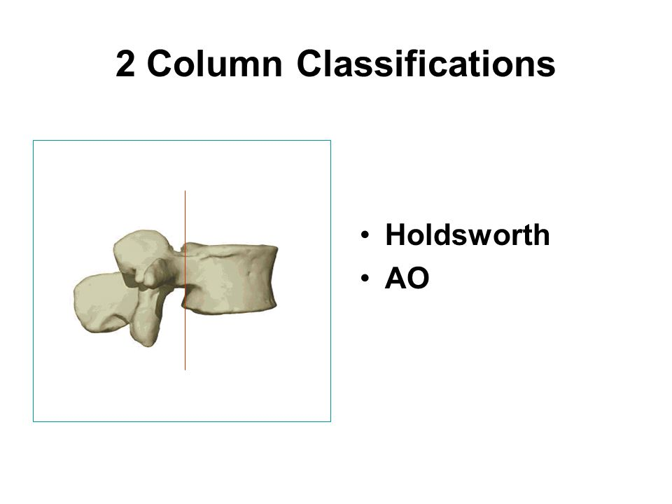 2 Column Classifications Holdsworth AO