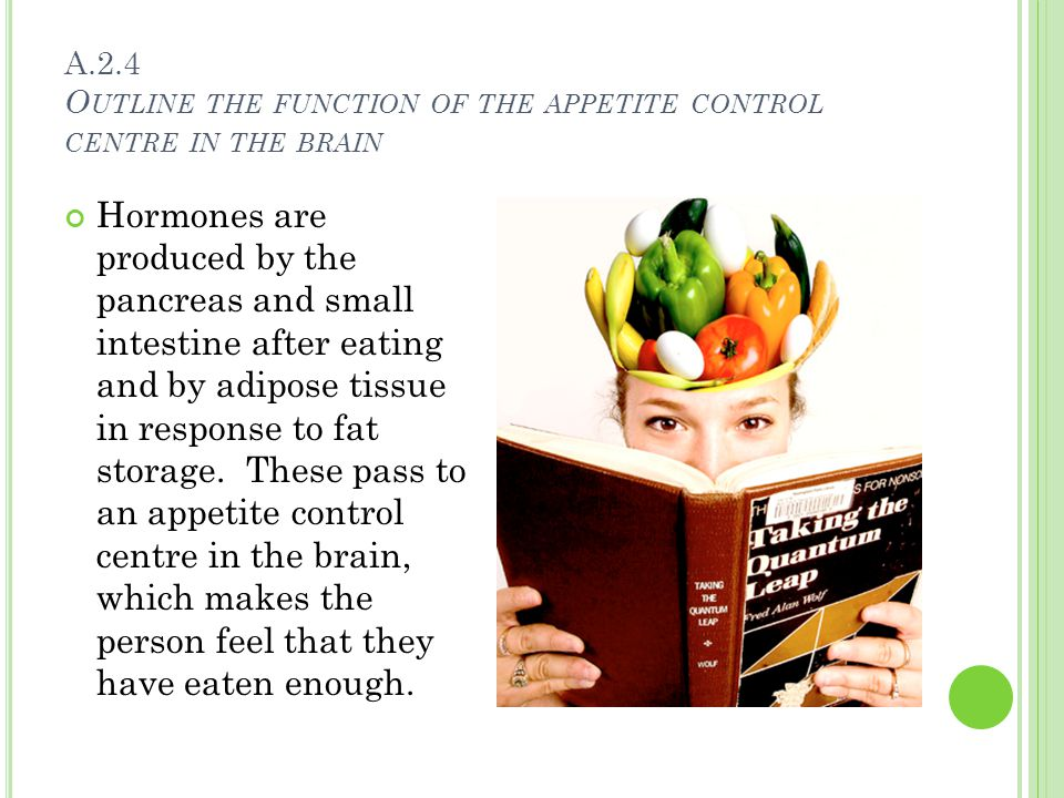 H OW THE BRAIN CONTROLS EATING A person's appetite is controlled by the hypothalamus The hypothalamus is shown in the picture to the left