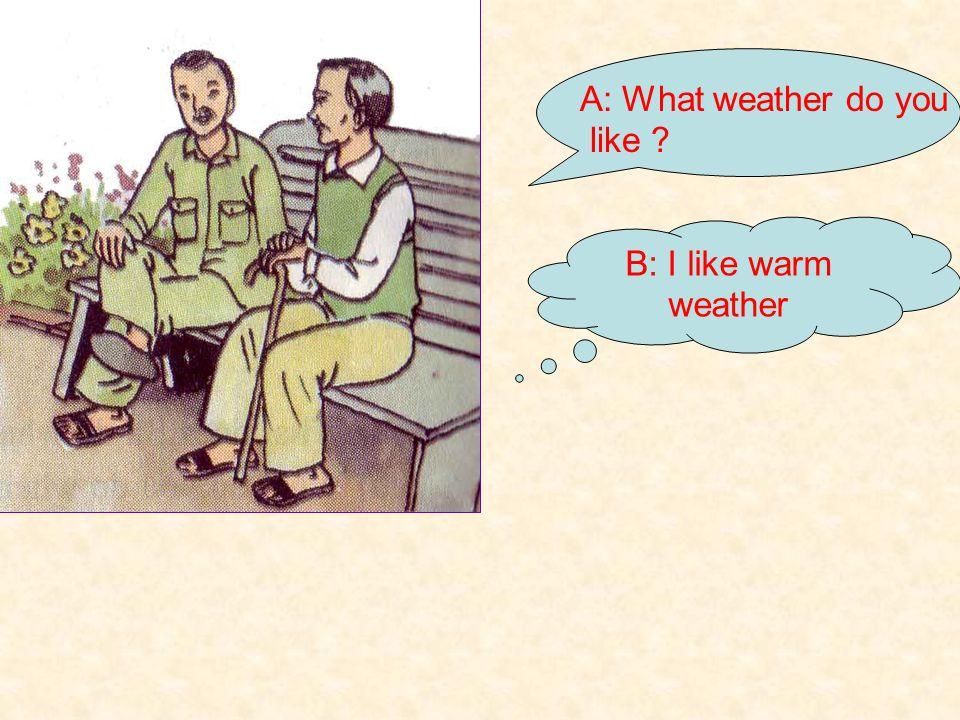 Survey What weather do you like ? NAME Like Nam Nga Hai Ngoc