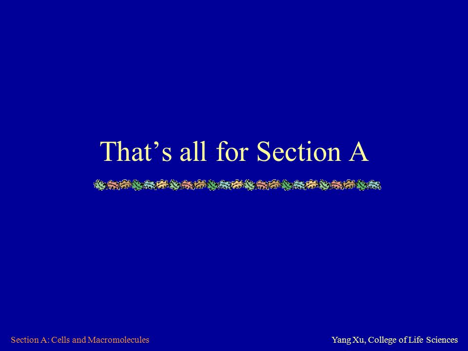 Section A: Cells and MacromoleculesYang Xu, College of Life Sciences That's all for Section A