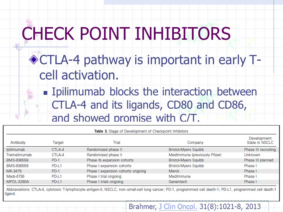 CHECK POINT INHIBITORS CTLA-4 pathway is important in early T- cell activation. Ipilimumab blocks the interaction between CTLA-4 and its ligands, CD80