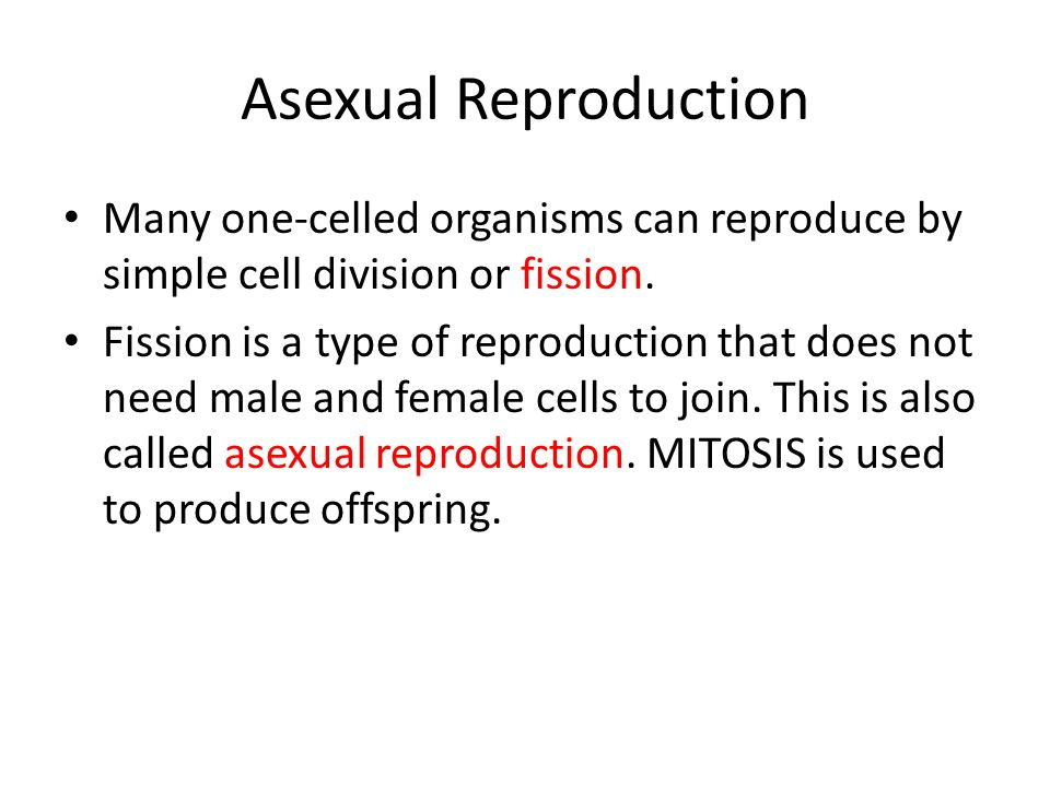 Asexual Reproduction Many one-celled organisms can reproduce by simple cell division or fission.