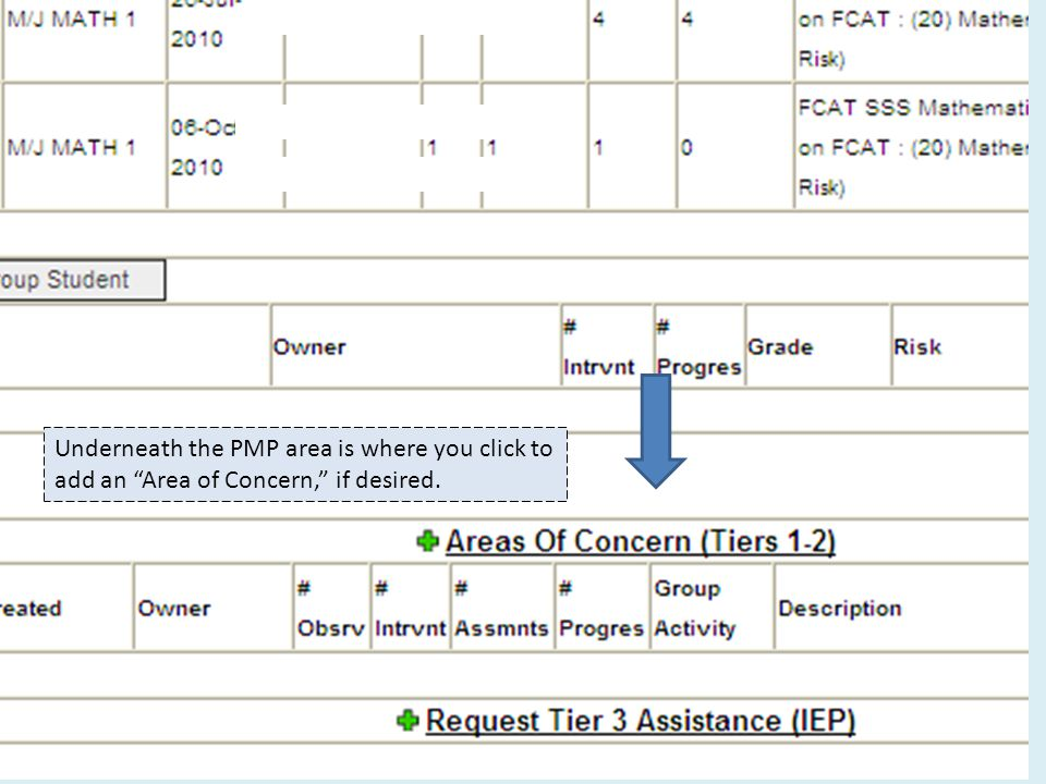 Underneath the PMP area is where you click to add an Area of Concern, if desired.