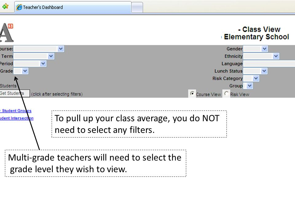 To pull up your class average, you do NOT need to select any filters.