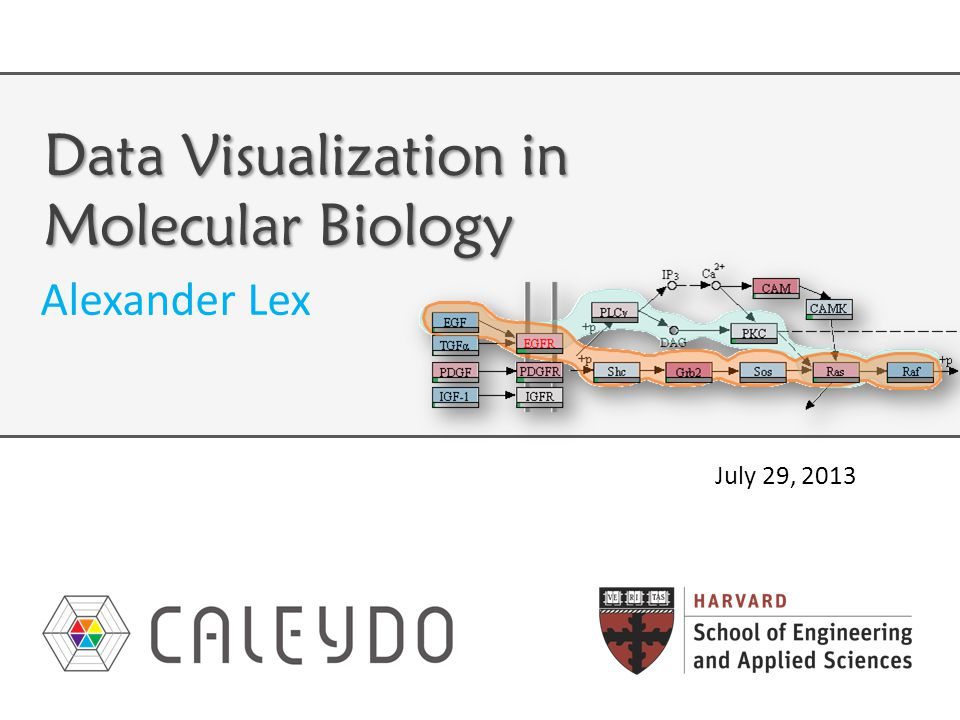 R II: Data Heterogeneity Different types of data, e.g., mRNA expression numerical mutation status categorical copy number variation ordered categorical metabolite concentration numerical Require different visualization techniques 42