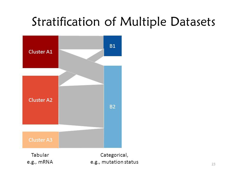 Stratification of Multiple Datasets Cluster A1 Cluster A2 Cluster A3 B1 B2 Tabular e.g., mRNA Categorical, e.g., mutation status 23