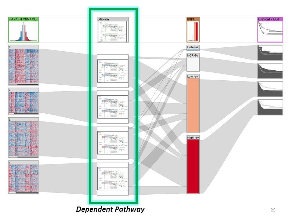 29 Dependent Pathway