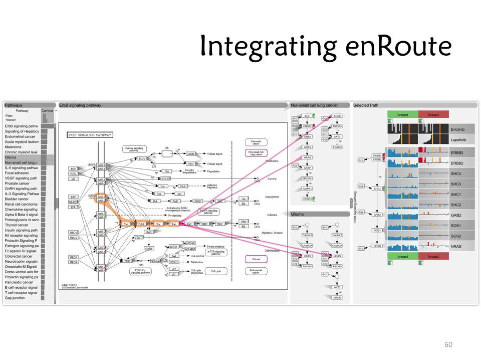 Integrating enRoute 60