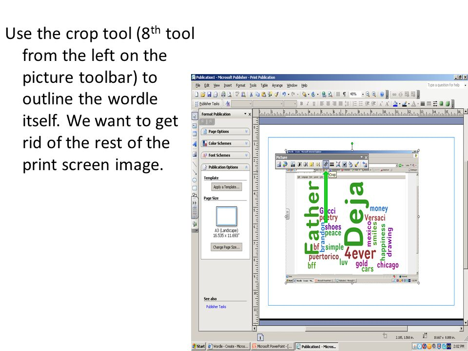 Use the crop tool (8 th tool from the left on the picture toolbar) to outline the wordle itself.