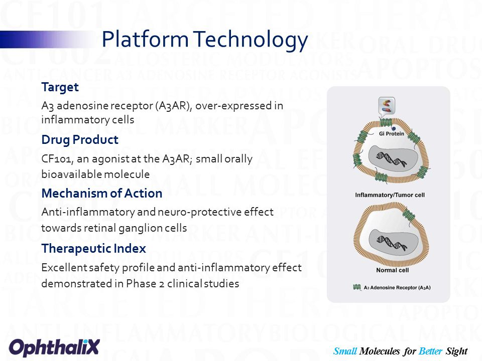 Small Molecules for Better Sight OphthaliX Inc.