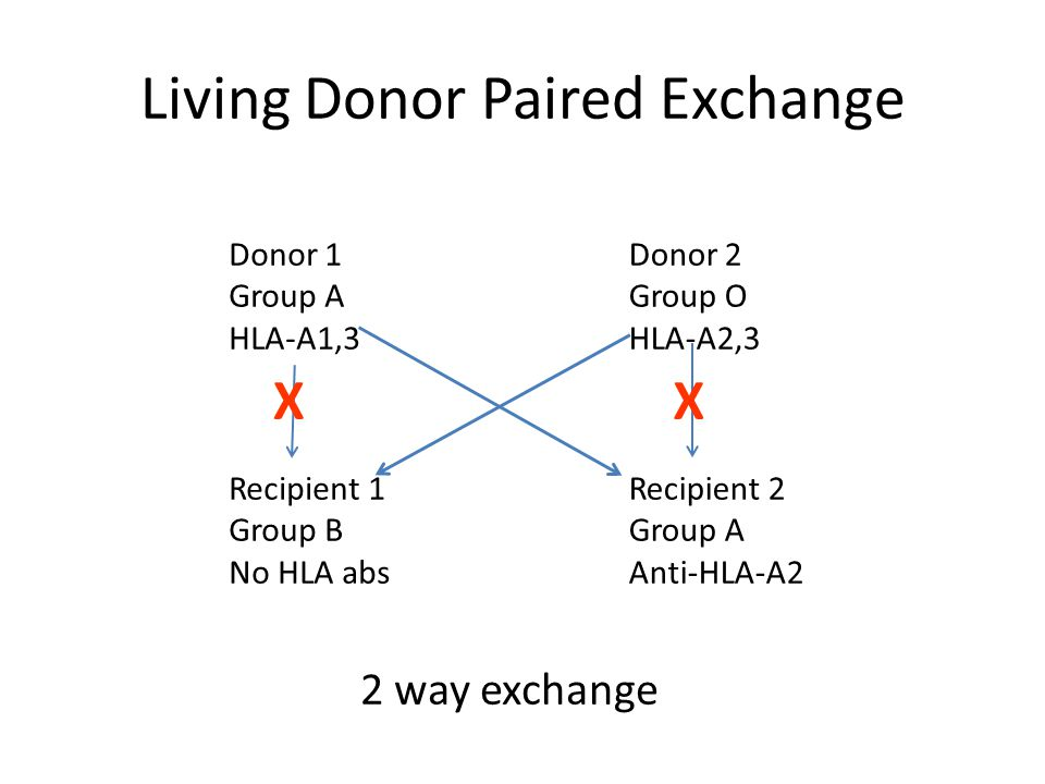 Living Donor Paired Exchange Donor 1 Group A HLA-A1,3 Recipient 1 Group B No HLA abs Donor 2 Group O HLA-A2,3 Recipient 2 Group A Anti-HLA-A2 XX 2 way exchange