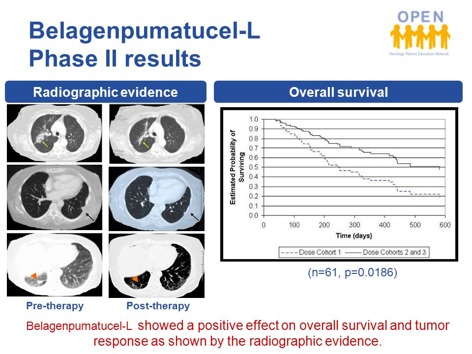 Radiographic evidence Pre-therapy Post-therapy Overall survival (n=61, p=0.0186) Belagenpumatucel-L Phase II results Belagenpumatucel-L showed a positive effect on overall survival and tumor response as shown by the radiographic evidence.