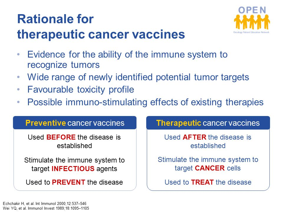 Rationale for therapeutic cancer vaccines Echchakir H, et al.