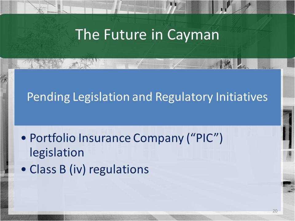 The Future in Cayman Pending Legislation and Regulatory Initiatives Portfolio Insurance Company ( PIC ) legislation Class B (iv) regulations 20
