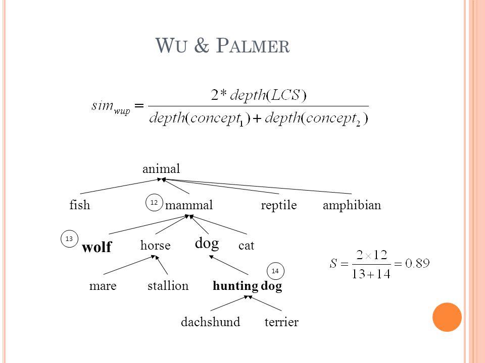 W U & P ALMER animal horse amphibianreptilemammalfish dachshund hunting dogstallionmare cat terrier wolf dog 12 13 14