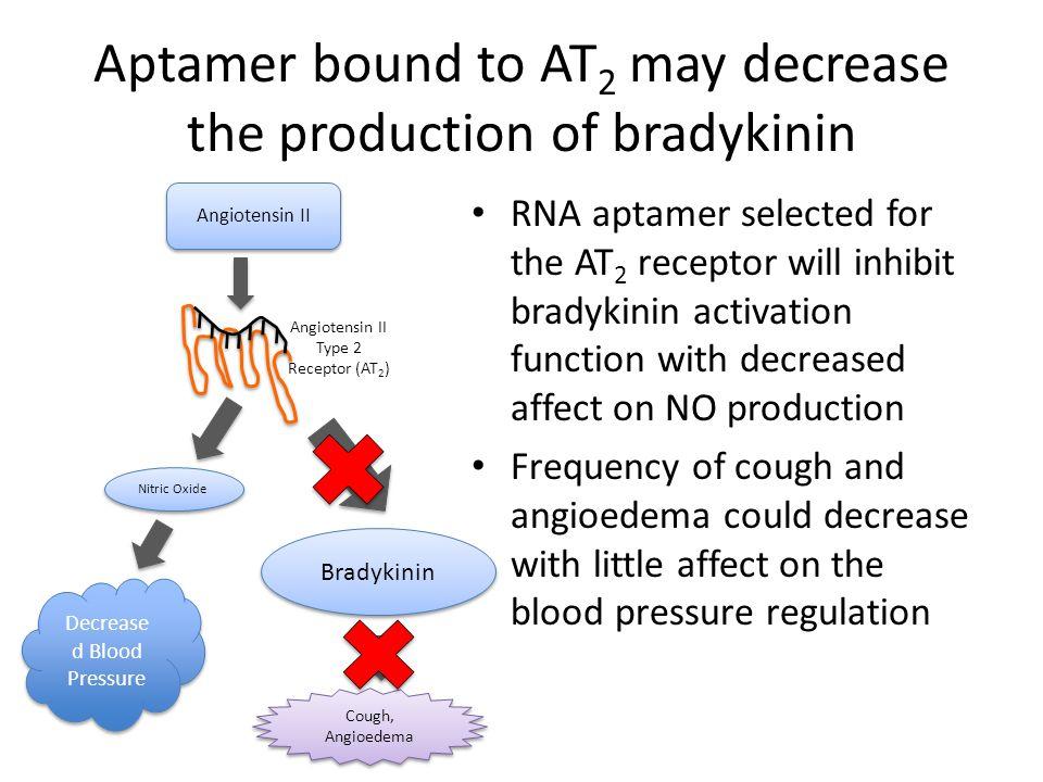 Aptamer bound to AT 2 may decrease the production of bradykinin RNA aptamer selected for the AT 2 receptor will inhibit bradykinin activation function